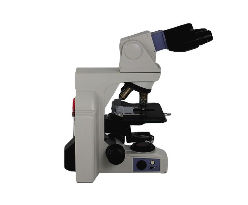 Nikon Eclipse E400 Microscope